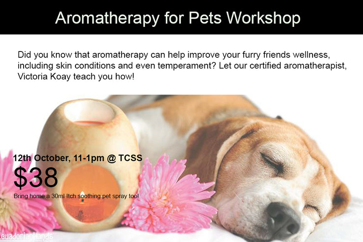 12th October: Aromatherapy for Pets! Sat, 11pm-1pm
