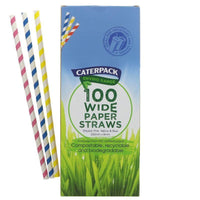 Kitchen Essentials - Caterpack - Enviro Paper Biodegradeable Straws Striped  (150 Pack)