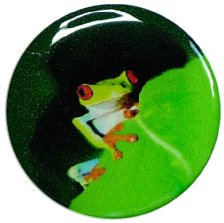 Libre Sticker Frosch