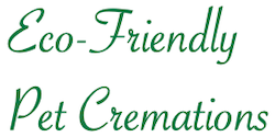Eco-Friendly Pet Cremations