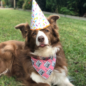 Birthday Girl Tie On Dog Bandana