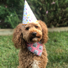 Load image into Gallery viewer, Birthday Girl Tie On Dog Bandana