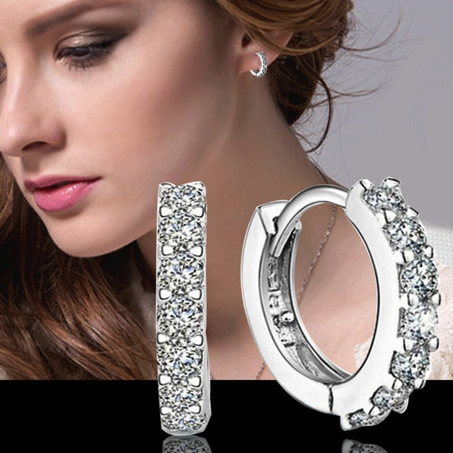 925 Sterling Silver Crystal Row Luxury Silver Earrings For Women