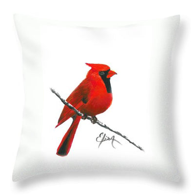 Cardinal - Throw Pillow