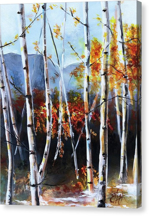 White Birch Tree Mountain Landscape - Canvas Print