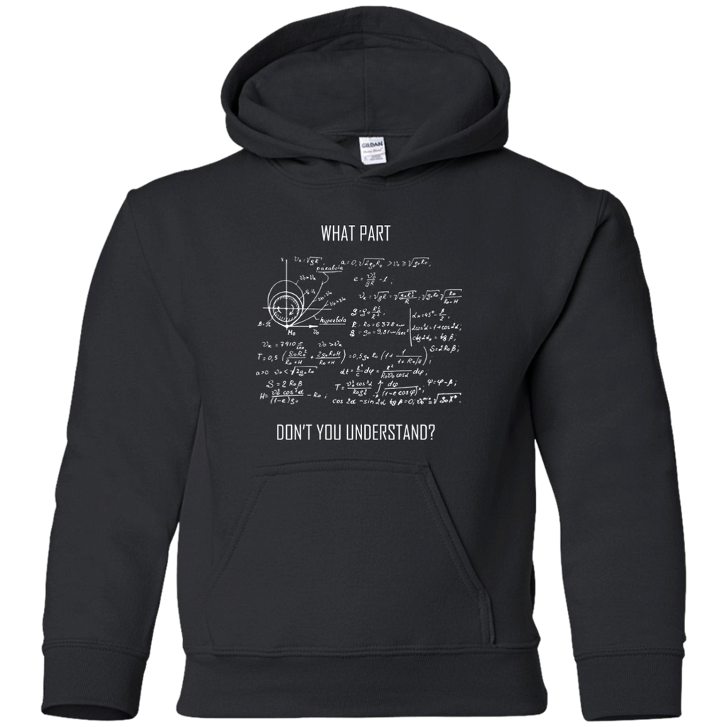 What Part Don't You Understand? Youth Science and Math Hoodie