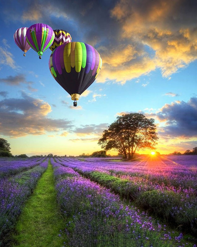 We Fly At Dawn! Hot Air Balloons Paint-By-Number Creative Art Project