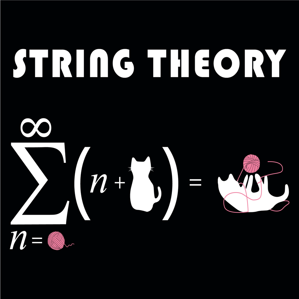 String Theory. Graphic Science and Math Hoodie