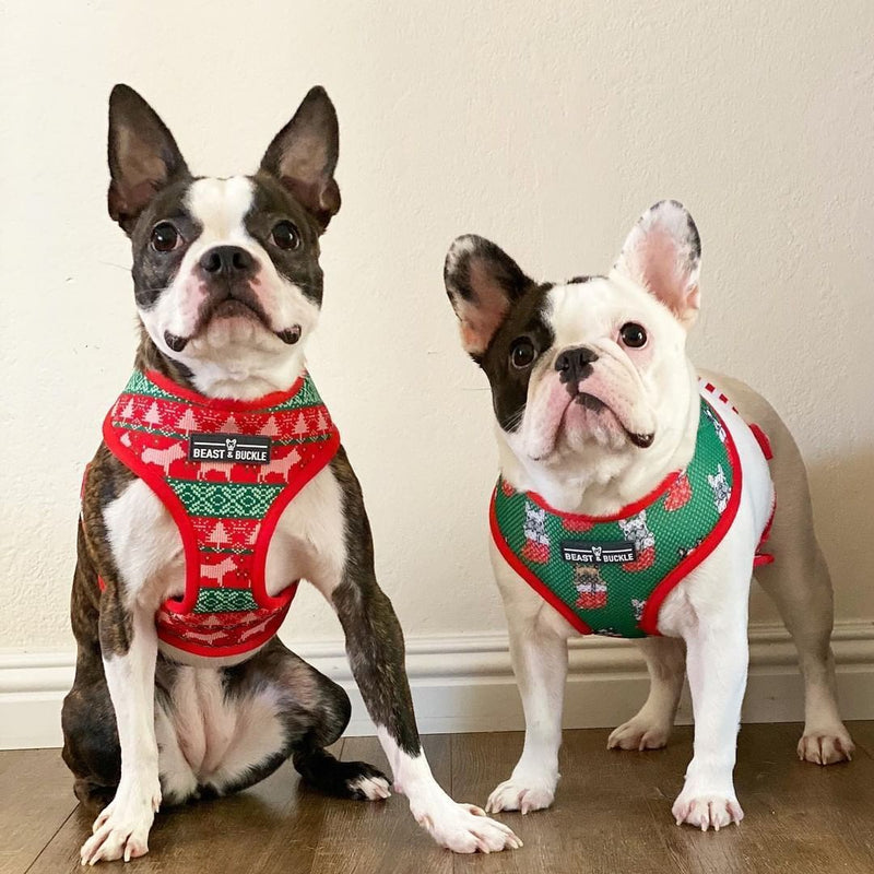 Christmas Reversible Dog Harness - Beast & Buckle