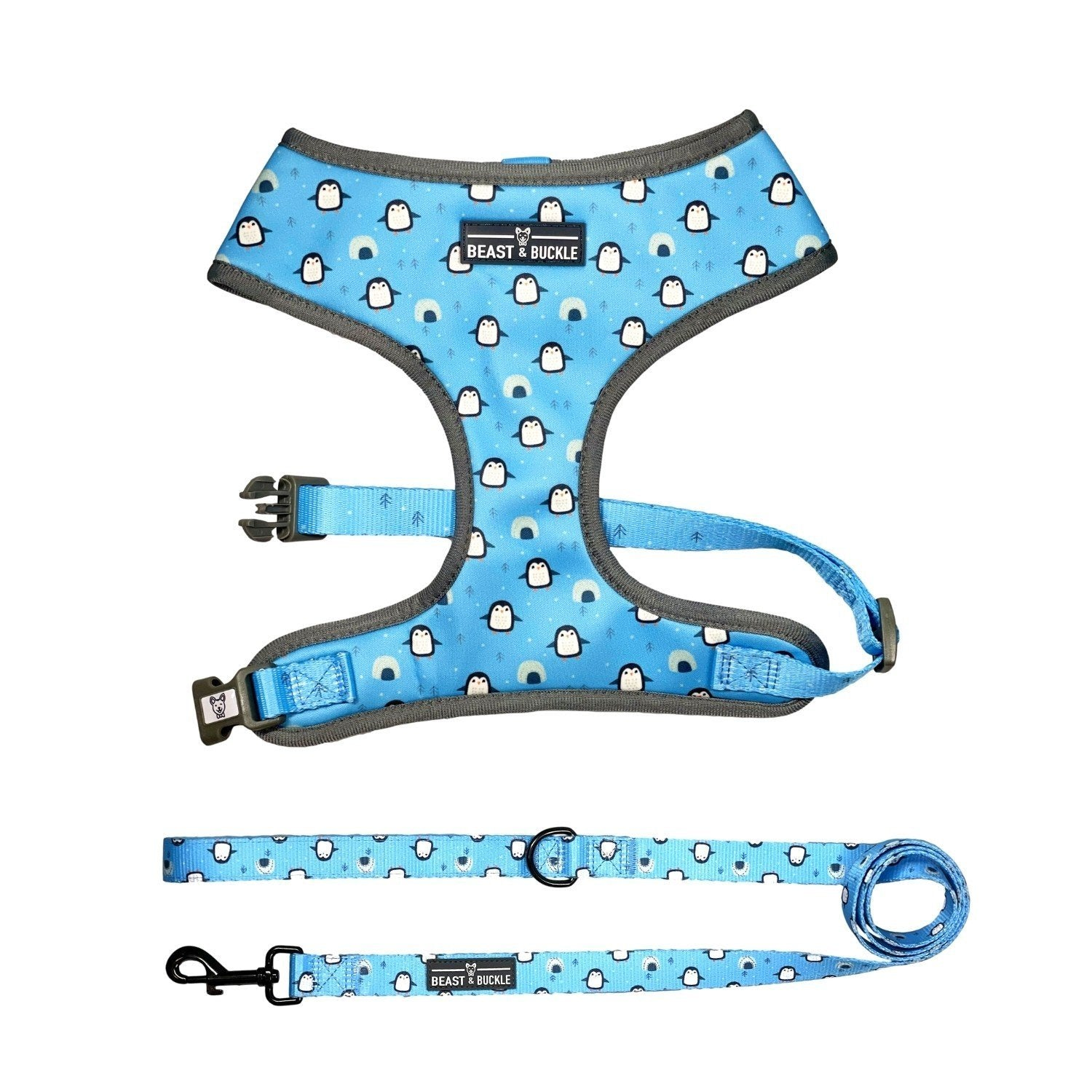Penguin Classic Harness & Leash Set - Beast & Buckle
