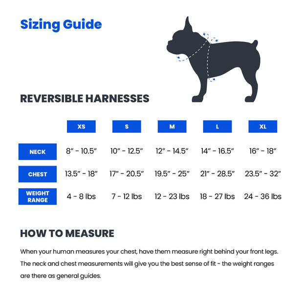 Popsicle Reversible Dog Harness 1