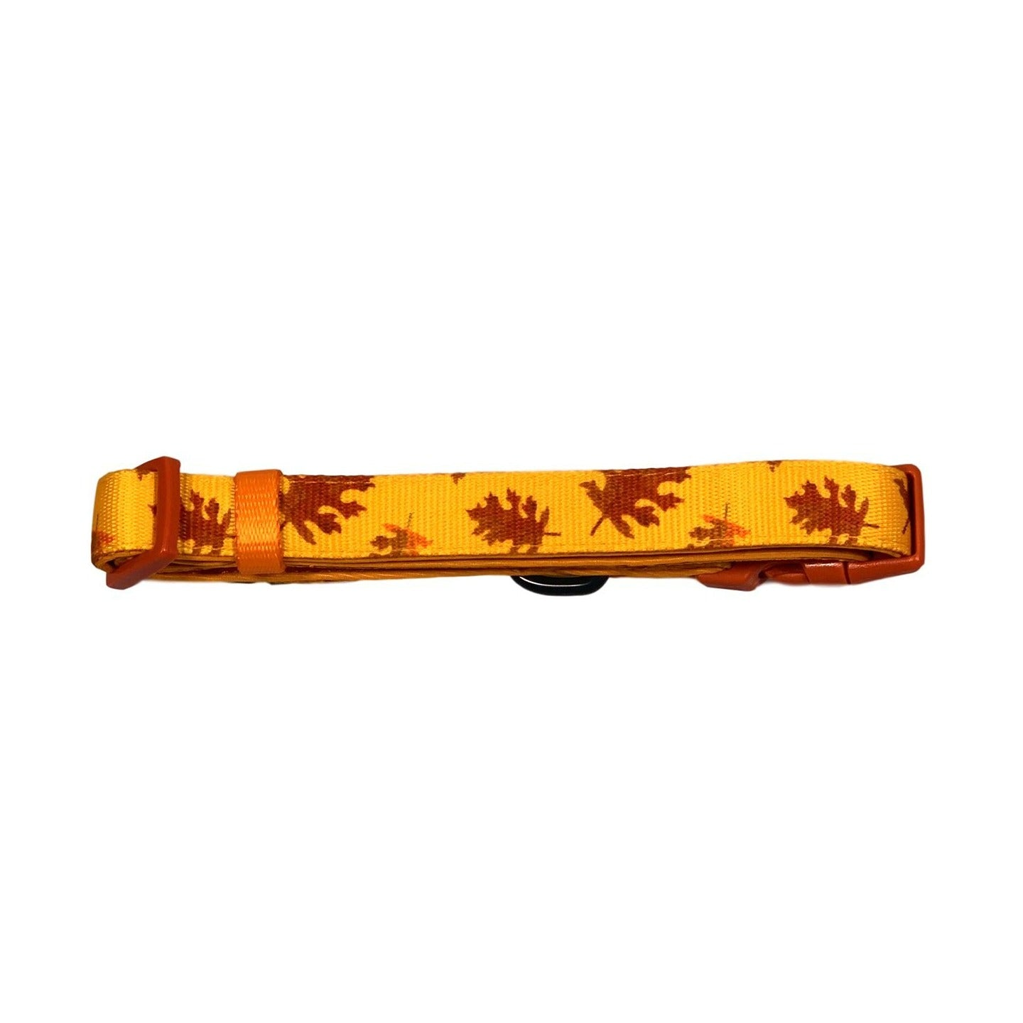 Pumpkin Spice Dog Collar - Beast & Buckle