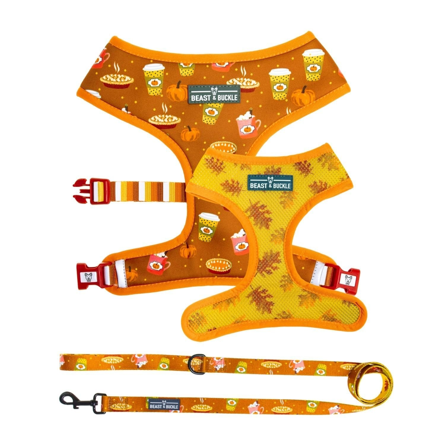Pumpkin Spice Harness and Leash Set - Beast & Buckle