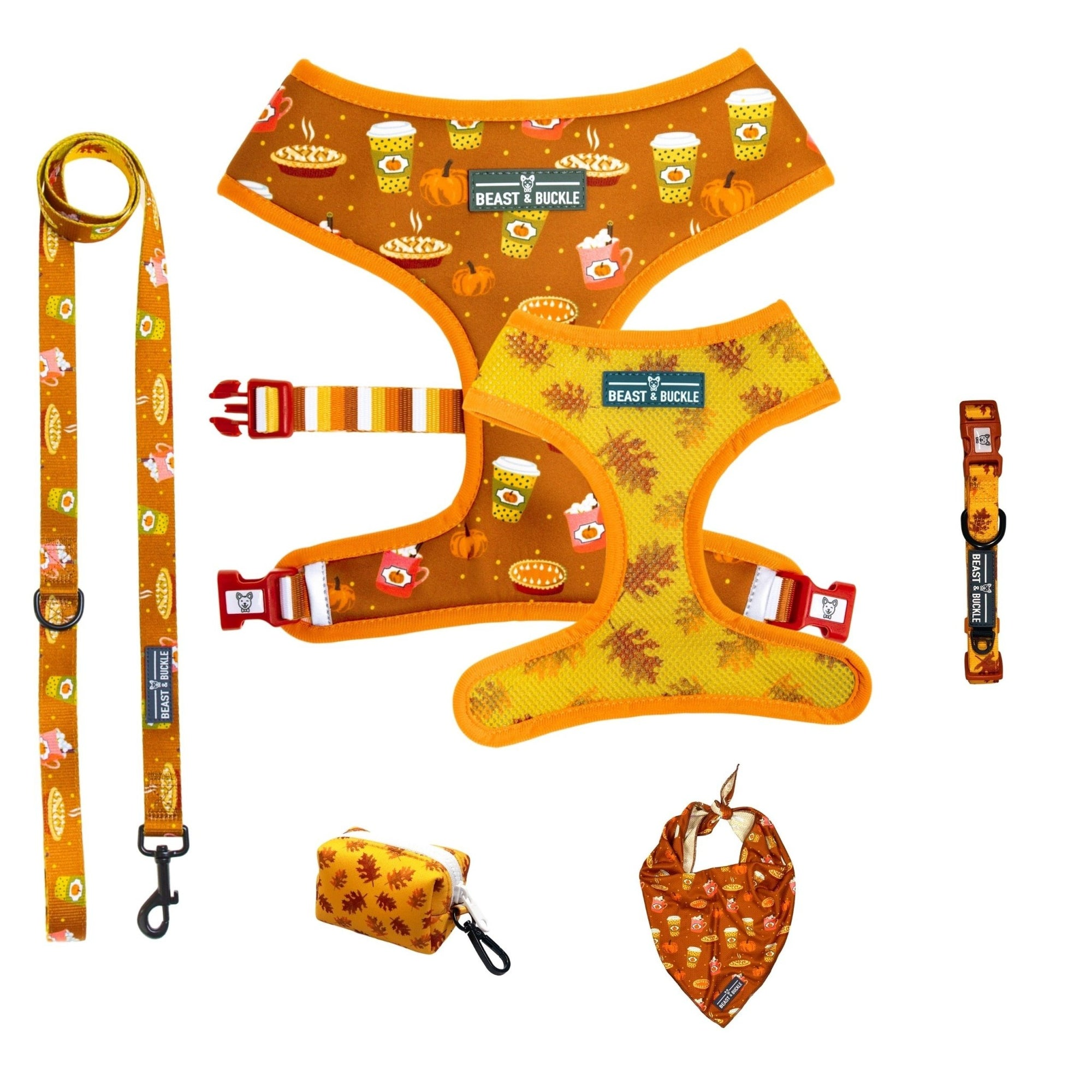 Pumpkin Spice Harness Collection Bundle - Beast & Buckle