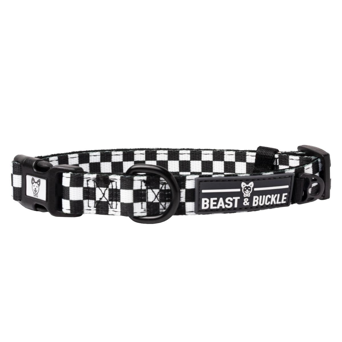Vroom Vroom Dog Collar - Beast & Buckle