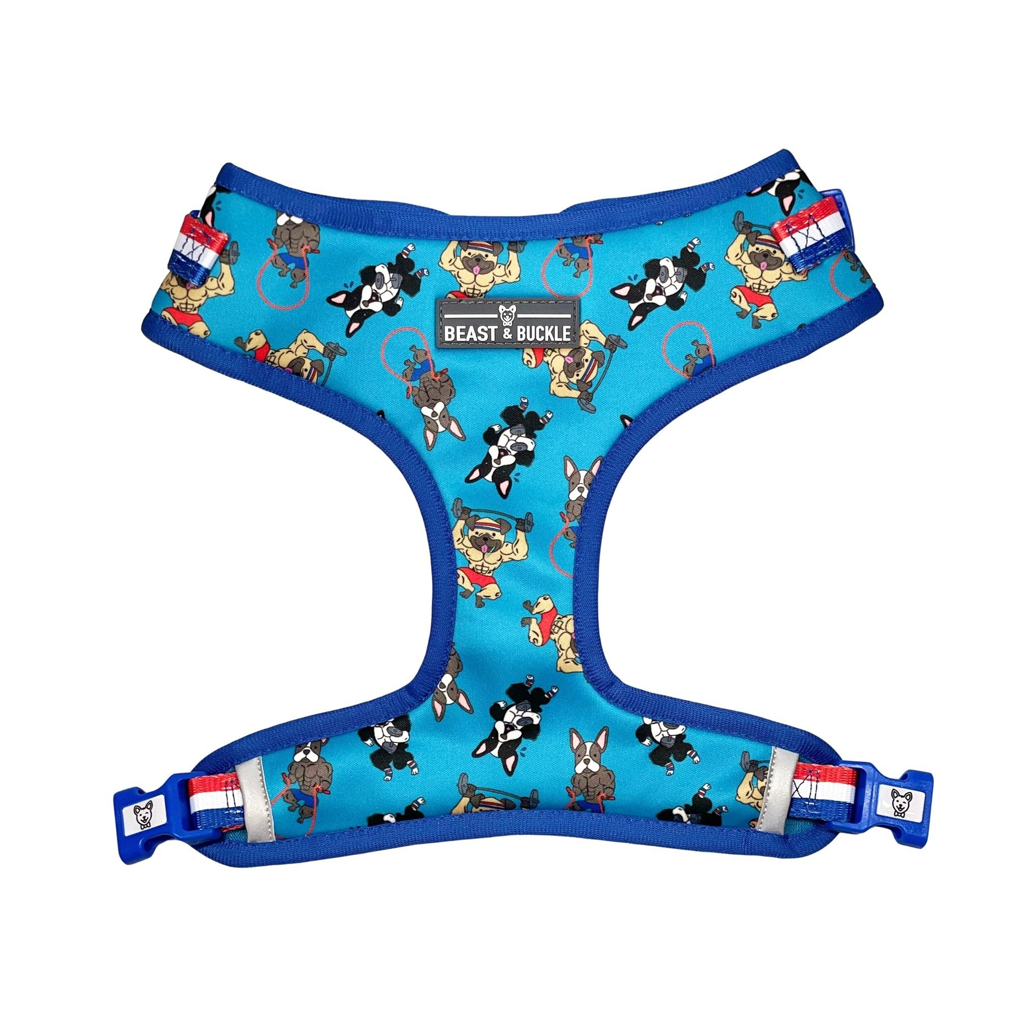 Workout Adjustable Dog Harness - Beast & Buckle
