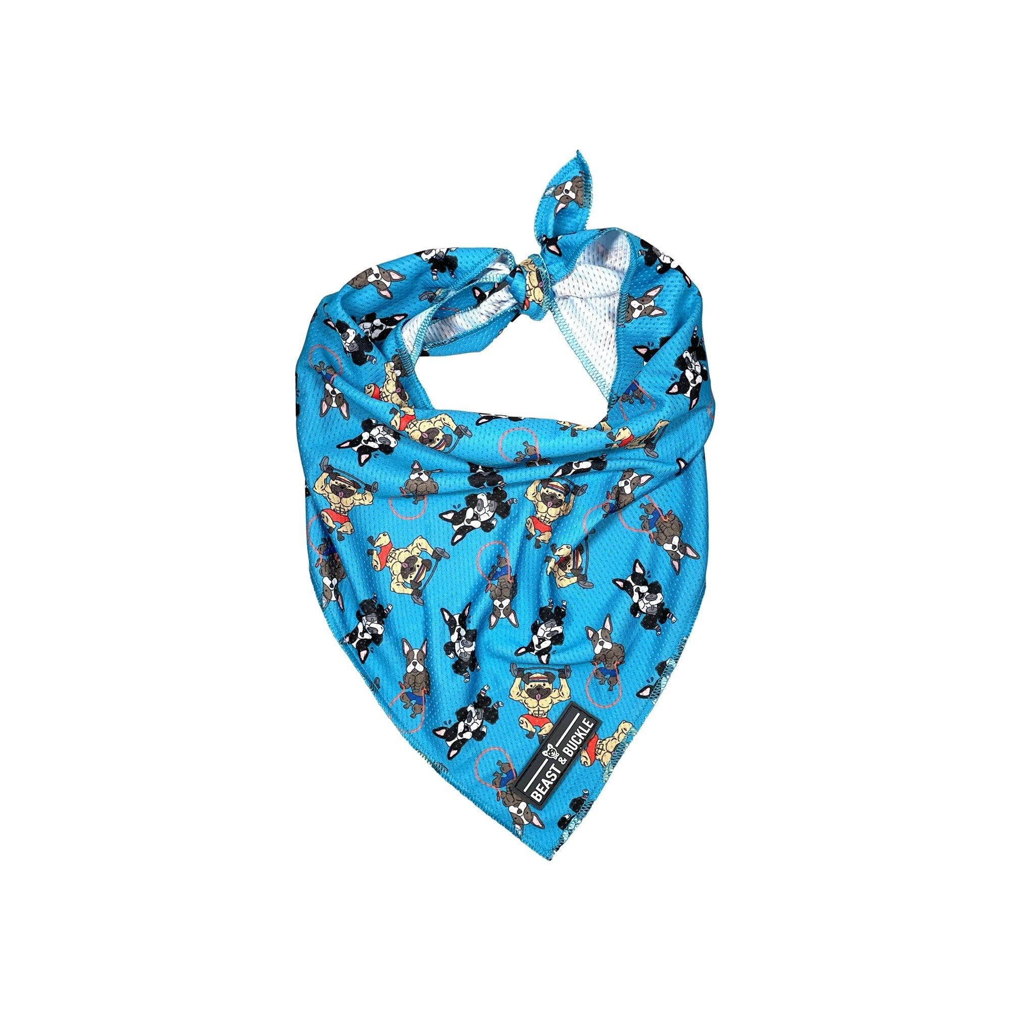 Workout Cooling Bandana - Beast & Buckle