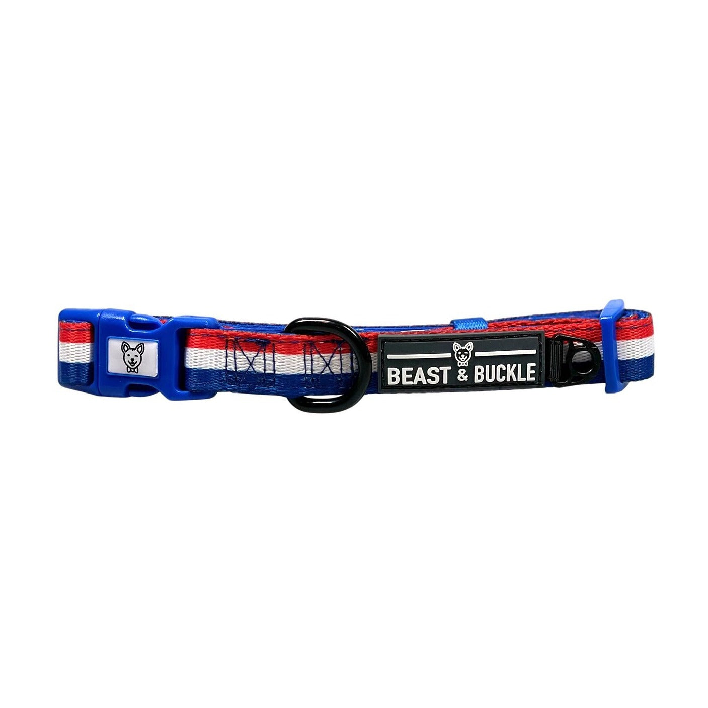 Workout Dog Collar - Beast & Buckle