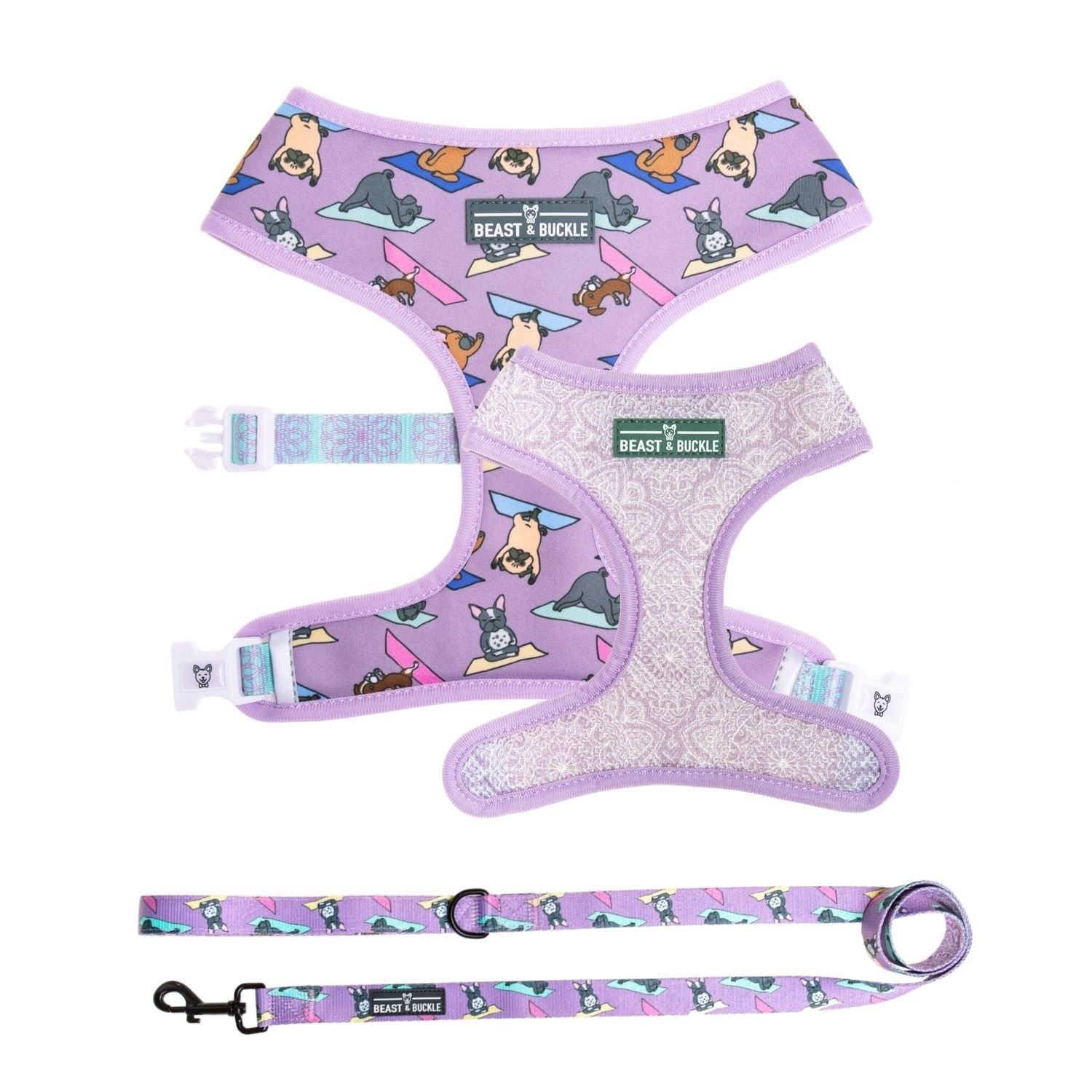Yoga Harness and Leash Set - Beast & Buckle