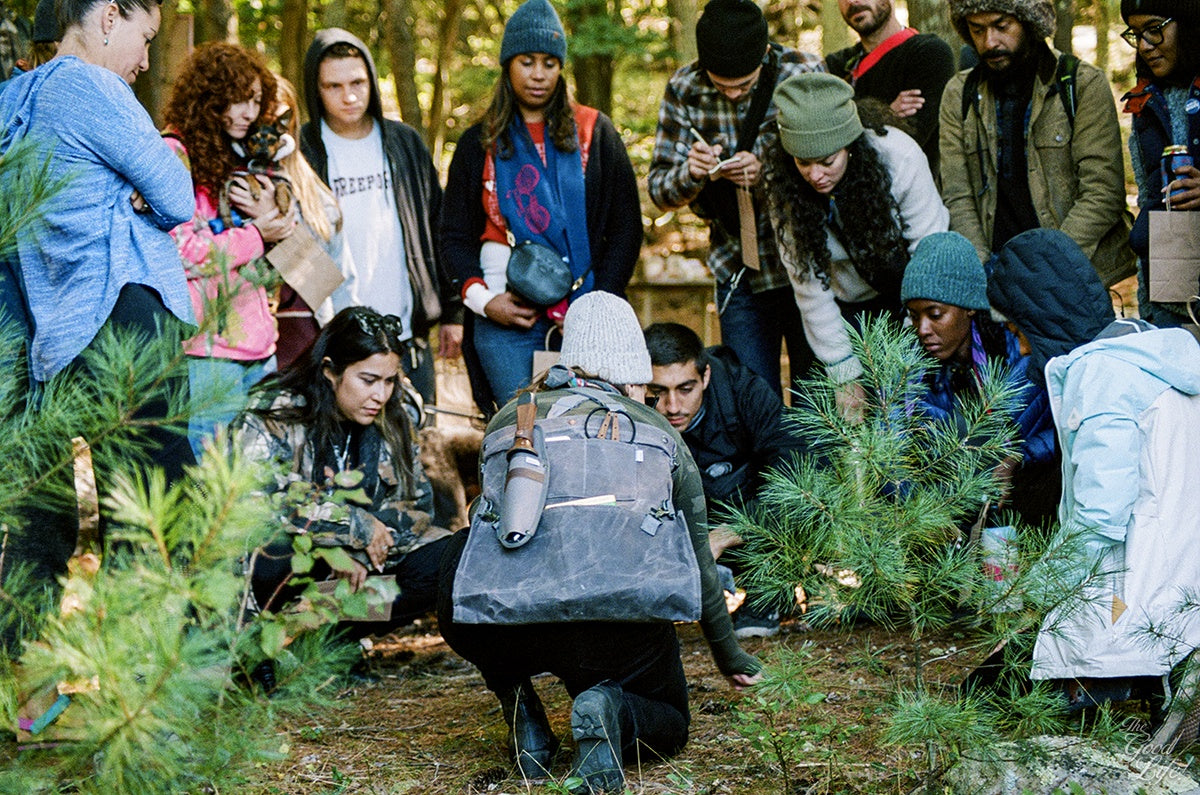Campers learn how to gather and harvest Wintergreen