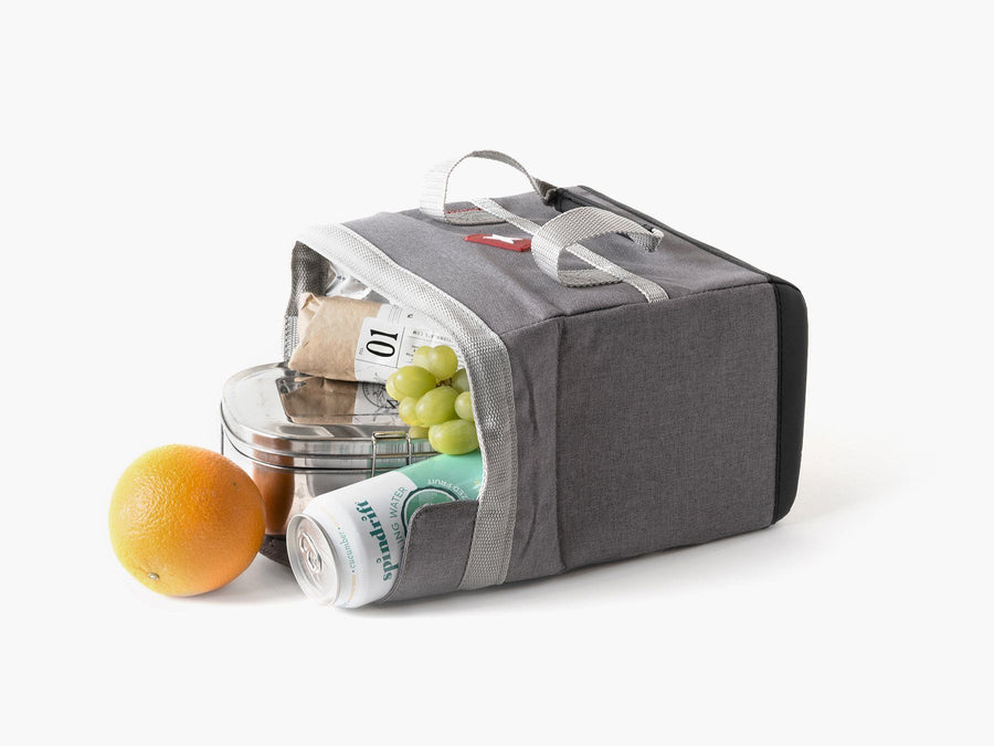 Barebones small soft sided lunch cooler grey