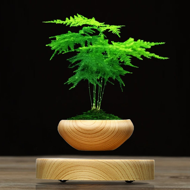 Magnetic Levitation Suspension Flower and Air Bonsai Pot - GamechangerKing