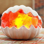 Sea Shell Himalayan Natural Hand Carved Salt Lamp with Dimmer Control - GamechangerKing