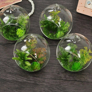 Modern Living - Hanging Glass Vase - GamechangerKing