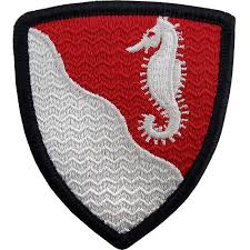36th Engineer Division Patch