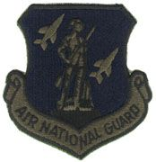 Air National Guard Subdued Air Force Patch