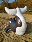 Inflatable Orca Whale by Dirty Bird