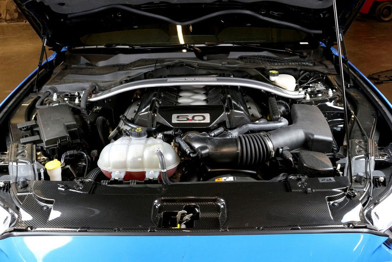 APR Couvercle de radiateur en carbone Mustang Performance S550