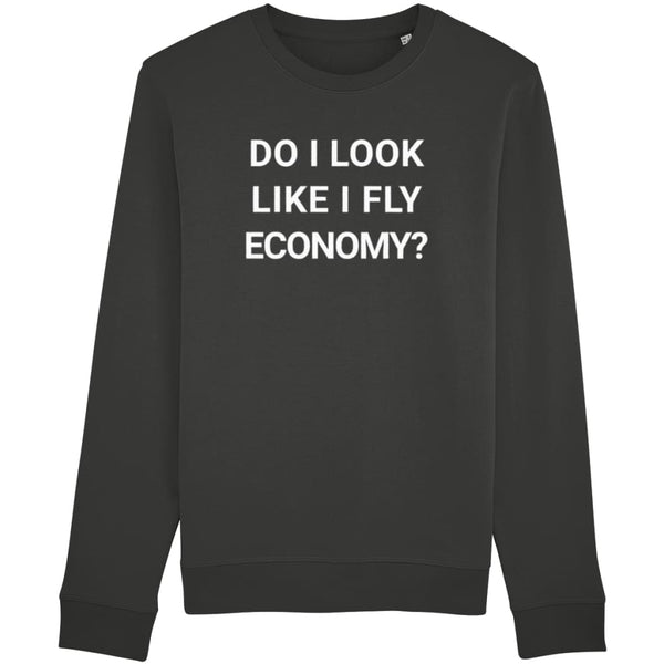Aero Threads Clothing Dark Heather Grey / X-Small Do I Look Like I Fly Economy Unisex Sweatshirt