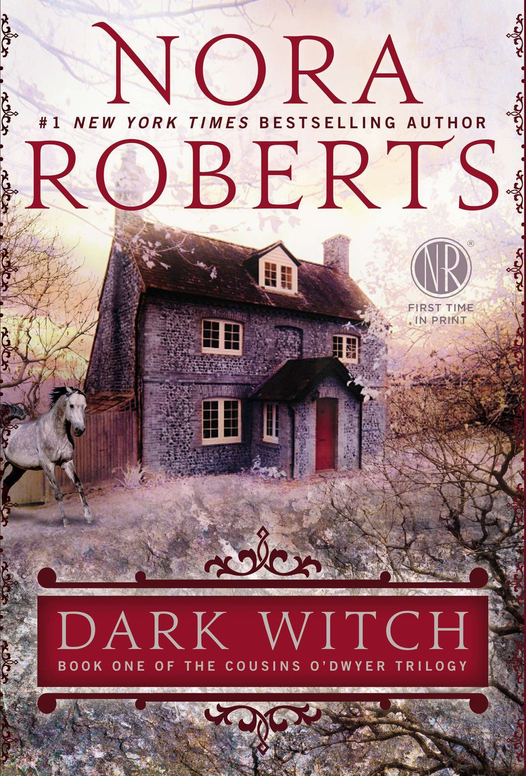 Dark Witch (Cousins O'Dwyer)