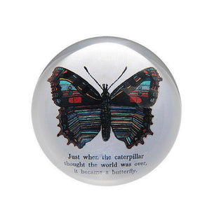 Paperweight- Butterfly