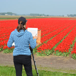 Painting tulip fields in The Netherlands