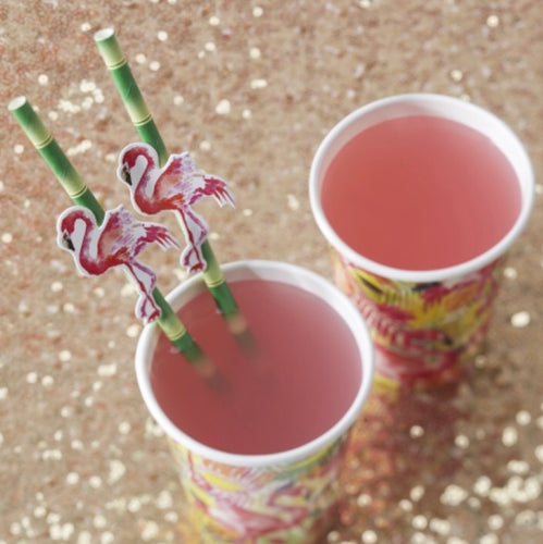 Ginger Ray Flamingo Paper Straws