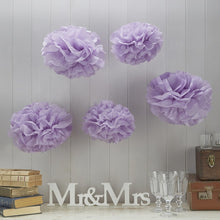 Load image into Gallery viewer, Ginger Ray Purple Tissue Paper Pom Poms