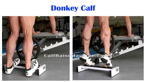 Roger Stewart Calf Machine Exercises 3