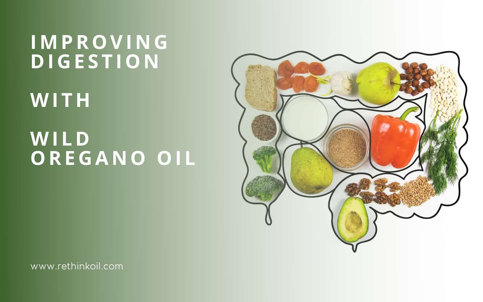 ReThinkOil Blog Improving Digestion with Wild Oregano Oil