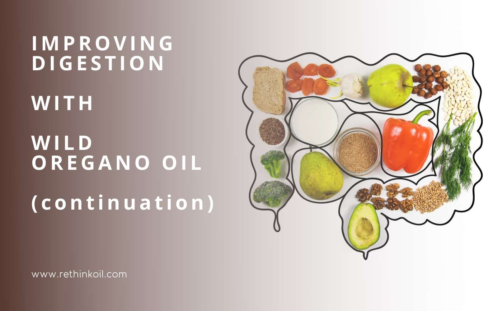 ReThinkOil Blog Improving Digestion with Wild Oregano Oil Continuation