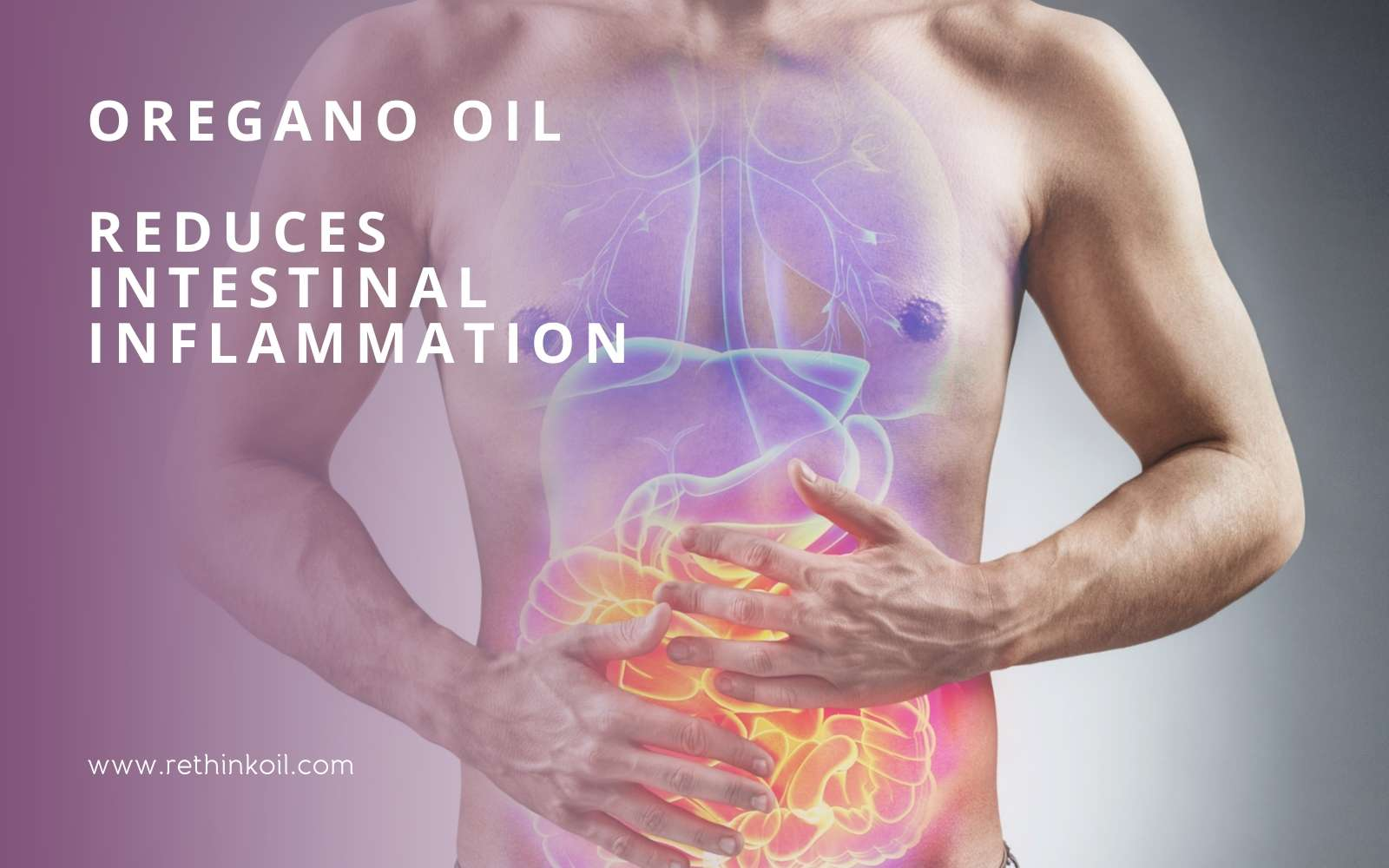 ReThinkOil Blog Oregano Oil Reduces Intestinal Inflammation