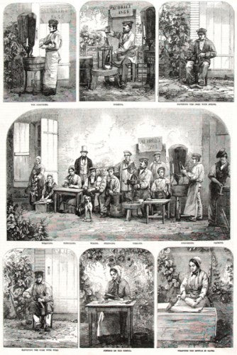 Champagne Bottling, At Pierry, In France