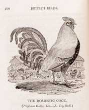 Load image into Gallery viewer, A History of British Birds. Vol. I. containing the History and