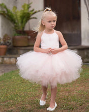 Load image into Gallery viewer, Dreamy Pink Blush Fluffy Tutu Dress