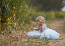 Load image into Gallery viewer, Cinderella Inspired Light Blue Tutu dress! Inspired by Cinderella herself.
