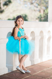 Jasmine inspired tutu costume dress! Gorgeous blue and gold trim! Baby toddler costumes!