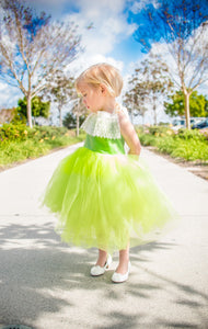Tinkerbell Inspired Costume Green Tutu dress! Inspired by Tinkerbell herself. FREE Shipping!