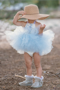 Blue and White Victorian Rose & Lace Tutu Dress