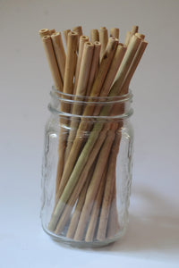 Bamboo Straw (Pack of 2)